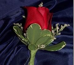 Mens-Rose-Bout